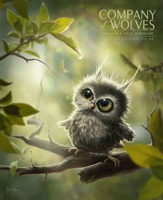 Little Owl Art Print by Company Of Wolves