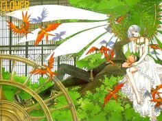 Digik Gallery - Anime & Game - Clover - Image ID 1329