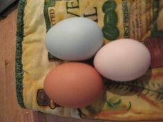 How to peel a boiled farm-fresh egg - and here I didn't think it was possible!