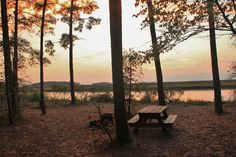 Picnic Table at Janes Island State Park. Peaceful
