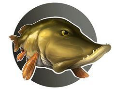 """Check out new work on my @Behance portfolio: """"Pike"""" http://on.be.net/1OAuz7B"""
