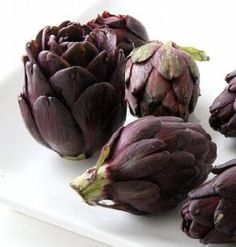 Purple Artichoke Plant - Delicious Perennial Vegetable - Easy to Grow - Pot House Plants For Sale, Plants For Sale Online, Edible Plants, Edible Garden, Artichoke Plants, House Plant Delivery, Plant Covers, Perennial Vegetables, Fruit Seeds