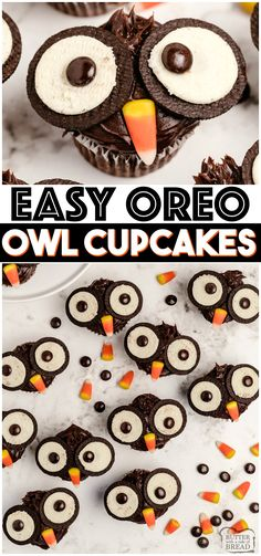 Oreo Owl Cupcakes made with chocolate ganache, Oreos and candy! Easy chocolate cupcakes made to look like little owls. Simple Halloween cupcakes that everyone loves! #cupcakes #Halloween #Oreo #Owl #OwlCupcakes #Easydessert #recipe from BUTTER WITH A SIDE OF BREAD