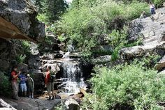 Maxwell Falls Trail near Evergreen, Colorado on dayhikesneardenver.com  Pet Friendly, up to 4 miles long, 45 mins away.