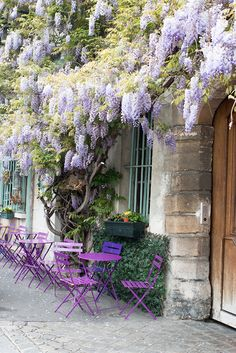 Shop Purple Wisteria in Paris Print Here White Blossom Tree, Blossom Trees, Paris In January, Weekend In London, Purple Wisteria, Different Shades Of Pink, European House, Romantic Things, Paris Hotels