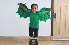 Medium Dragon Costume dragon wings costume by MainsailStudio