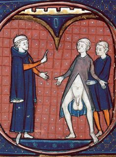 This one just begs a comment contest! Besançon, Bibliothèque municipale, ms. 0457, f. 273v. Avicenna, Canon medicinae. Paris, 3rd quarter of the 13th century.