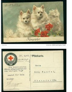 http://www.delcampe.net/page/item/id,266005755,var,Hond-Dog-Konigsspitzer-Spitz-Rot-Kreuz,language,F.html