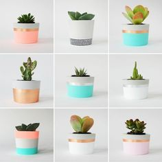 PLANT LIFE | CORAL & HERB These planters are beautiful! Potentially a DIY project for the summer!