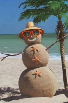 Florida's version of a snowman!! It's how we roll. Hahahaha