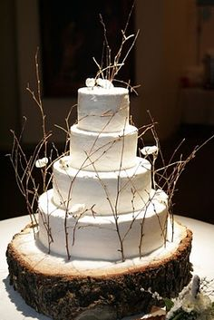 Gorgeous rustic wintery cake.