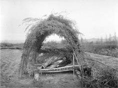 Chemehuevi Indian Man Sleeping in Shelter  by  Unknown Artist