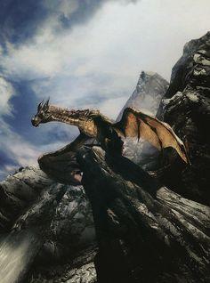 Dragon, Thanks Lauren :)