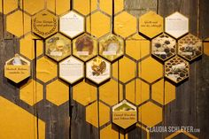 Bees exhibition at Karls Erlebnisdorf Wustermark Booth Design, Wall Design, Honey Store, Stand Feria, Mood And Tone, Phone Shop, Bee Art, Bee Design, Nature Center