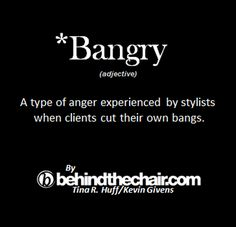 Don't make your hair styling bangry! Cosmetology Quotes, Hairdresser Quotes, Hairstylist Quotes, Cosmetology Student, Hair Salon Quotes, Hairstylist Problems, Hair Affair, Hair Humor, Hair Meme