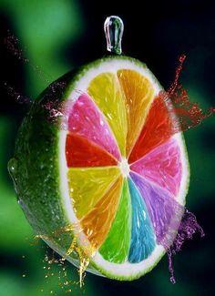 Multicolored Lime