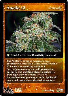 Apollo 13 | Repined By 5280mosli.com | Organic Cannabis College | Top Shelf Marijuana | High Quality Shatter