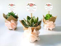 www.trendipot.com/ nikah şekeri nikah hediyesi succulent sukulent wedding gift nikah bitkisi