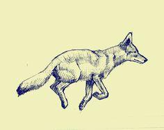 Coyote Sketch Sketch Ideas, Drawing Ideas, Coyote Drawing, Coyote Tattoo, Salvation Tattoo, Coyotes, Horse Art, Beauty Stuff, Art Tips