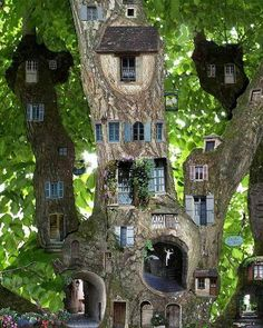 WOW WOW WOW, of a Tree House, amazing beauty.           My thoughts exactly!                                                                                                                                                                                 More