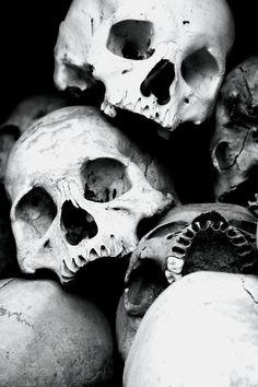 cavalera, skull, branco, caveira, bones, white, black