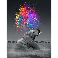 cloud elephant Cigarettes Animal DIY Digital Painting By Number Modern Wall Art Canvas Painting Unique Gift Room Decor – Garden & Home Elephant Colour, Elephant Love, Happy Elephant, Colorful Elephant Tattoo, Elephant Artwork, Elephant Stuff, Elephant Trunk, Elephant Design, Elefant Wallpaper