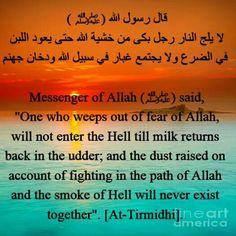 77 Best The Prophet Muhammad Peace Be Upon Him Images Prophet