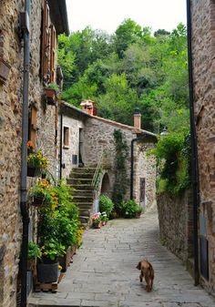 Tuscany - Castelnuovo di Val di Cecina Toscana Italia, Tuscany Italy, Tiny House, Interior Decorating, Stairs, Europe, Architecture, City, Places