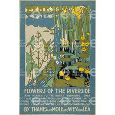 """illustration : """"flowers of the riverside"""", affiche UK par Edward McKnight Kauffer, plantes aquatiques, nénuphars, bords de l'eau London Transport Museum, Tourism Poster, Design Poster, Graphic Design, Book Design, Vintage Travel Posters, Illustrations Posters, Illustration Art, Poster Prints"""
