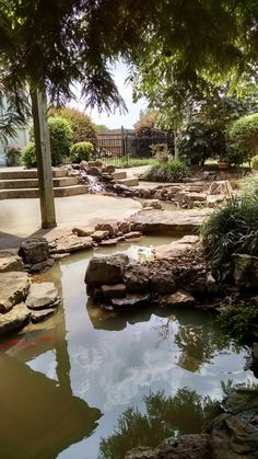 We just rebuilt this pond got it turned on and the fish back in. We added a long swim stream and a stone bridge. Pond Water Features, Koi Ponds, Pond Ideas, Water Gardens, Waterfalls, Bridge, Swimming, Outdoors, Fish