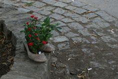 Guerrilla gardening in Prague