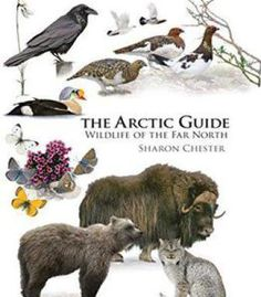 The Arctic Guide: Wildlife Of The Far North PDF