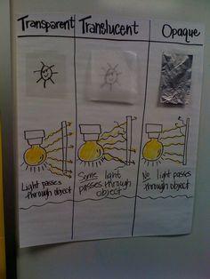 science notebook: light