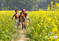 """I was in India in winter and there were fields of bright yellow mustard seed wherever I went. """"Make a Run, by Shahnaz Parvin"""""""