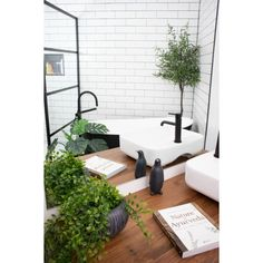 Artificial hanging Maidenhair 24'' - Décors Véronneau Green Plants, Artificial Plants, Houseplants, Your Space, Interior Decorating, Decoration, Indoor, Inspiration, Design
