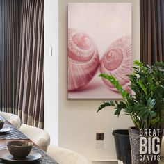 "Add a soothing canvas print of snail shells to your glamorous living room with Priska Wettstein's ""Togetherness."" See more wall art options at GreatBIGCanvas.com"