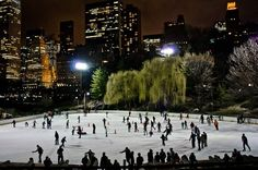 Things to Do in Winter in New York City  Embrace the snow or escape the cold with these things to do in New York City