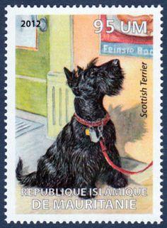 Scottish Terrier Dog Art Postage Stamp Mint Unused MNH 2012   eBay
