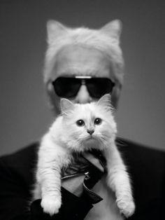"Karl ""Kat Daddy"" Lagerfeld interview about his cat, Chopette, in Harper's Bazaar."