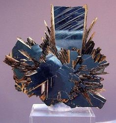 Rutile crystals on Hematite... This is nature at her best... This is art to me. Crystal Porn.