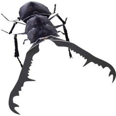 Giraffa Stag Beetle,Science,Paper Craft,Asia / Oceania,stag beetle,insect