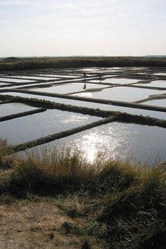Batz sur mer petie cite de caractere marais salants