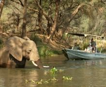 Boat safari in the Lower Zambezi National Park, Audley Travel What Is Geography, Audley Travel, Safari Holidays, African Safari, National Parks, Places To Visit, Explore, Canoeing, Boat