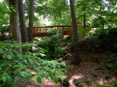 spring woodland gardens, Duke Gardens