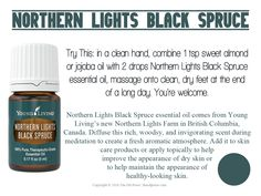 Northern Lights Black Spruce essential oil comes from Young Living's new Northern Lights Farm in British Columbia, Canada.