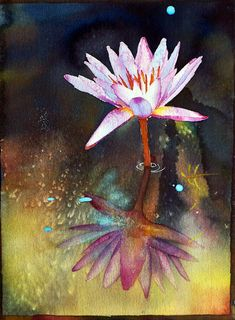 Paintings by Ross Barbera, Watercolor, Acrylic and Digital on Paper - Paintings by Ross Barbera Watercolor Water, Watercolor Flowers, Flower Art, Art Flowers, Watercolor Pictures, Water Lilies, Original Art, Lily, Inspiring Art