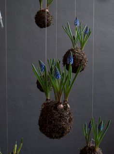 #string #garden - but make it in felt and line with a glass bulb jar.