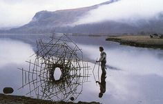 Knotweed stalks Derwent Water, Cumbria from Andy Goldsworthy: A Collaboration with Nature