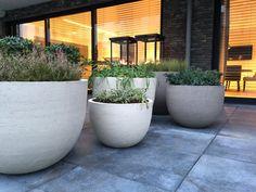Beste afbeeldingen van groenseizoen tuinenontwerpstudio