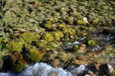Sierra de Cazorla- Jaen